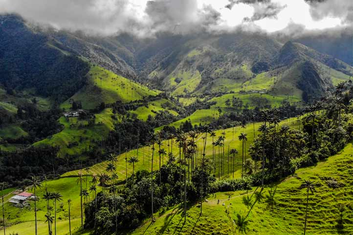 Cocora Valley Mountains