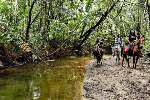 Horse riding by river in Colombia